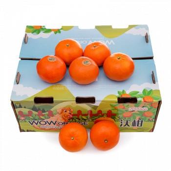 广西沃柑 柑橘5kg精品年货礼盒