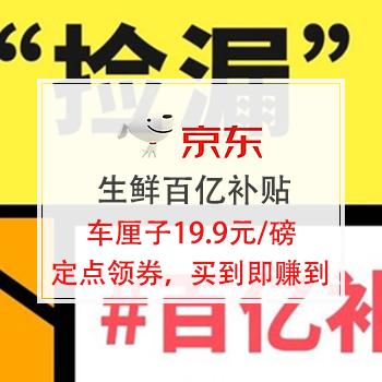 0点领券:京东生鲜百亿补贴